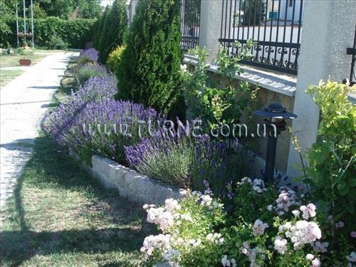 Villa Amfora Болгария Кранево
