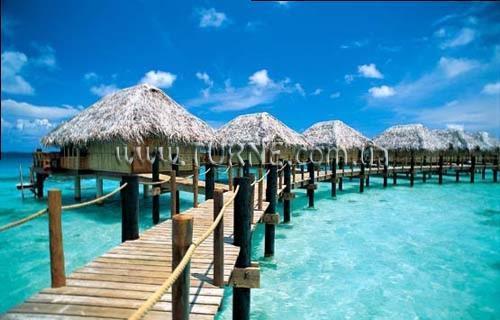 Отель Moorea Pearl Resort & SPA Французская Полинезия Муреа