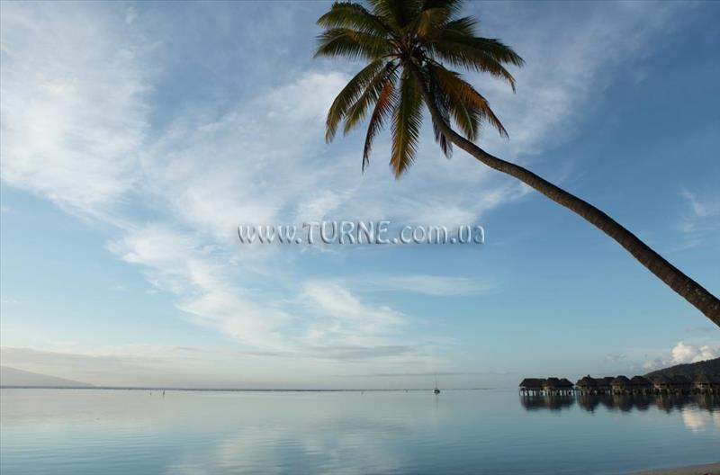 Фото Sofitel Moorea la Ora Beach Resort Французская Полинезия Муреа