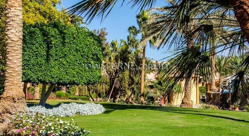 Фото Club Paradisio El Gouna Египет Эль Гуна
