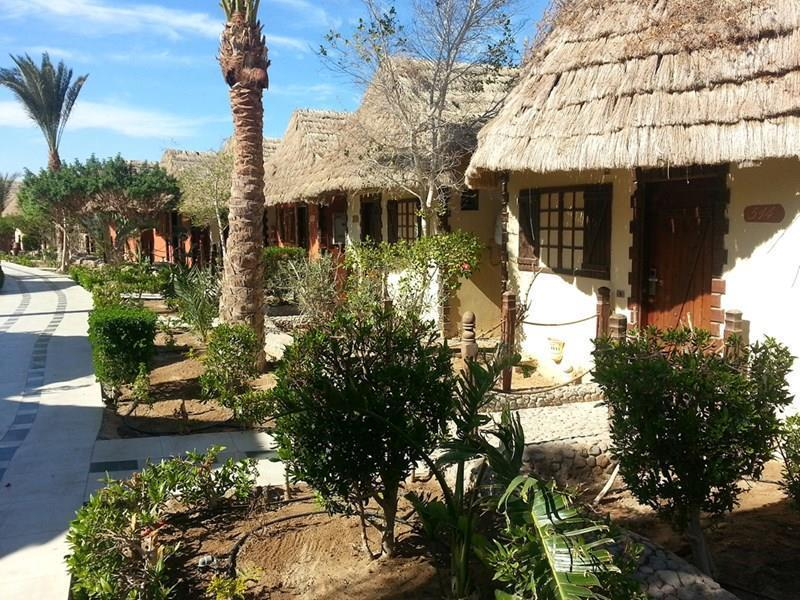 Фото Panorama Bungalow Resort El Gouna Египет Эль Гуна