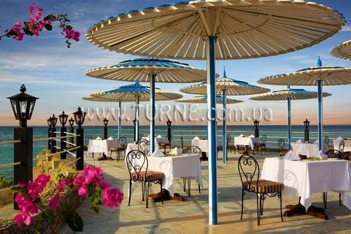 Фото Festival Shedwan Golden Beach Resort 3*