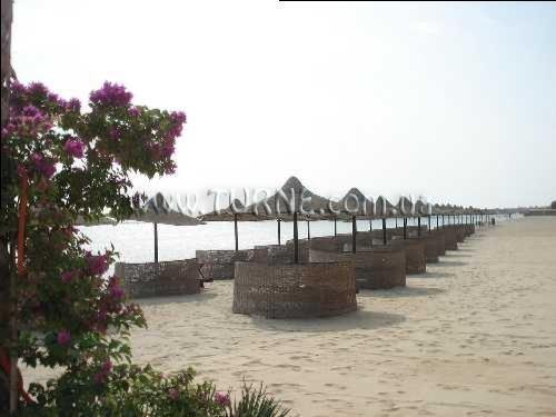 Фото Cupidon Resort Marsa Alam 4*