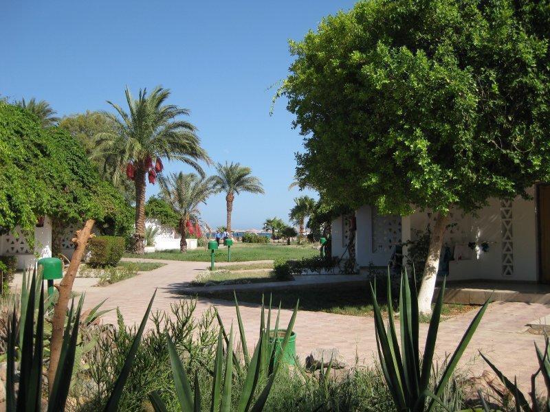 Отель Shams Safaga Resort Сафага