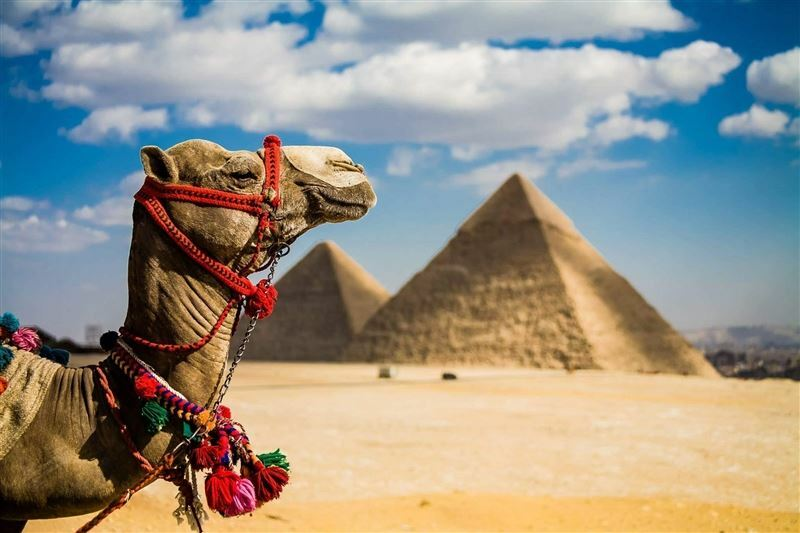 Anex Super Fortuna 5 * Египет Шарм-эль-Шейх