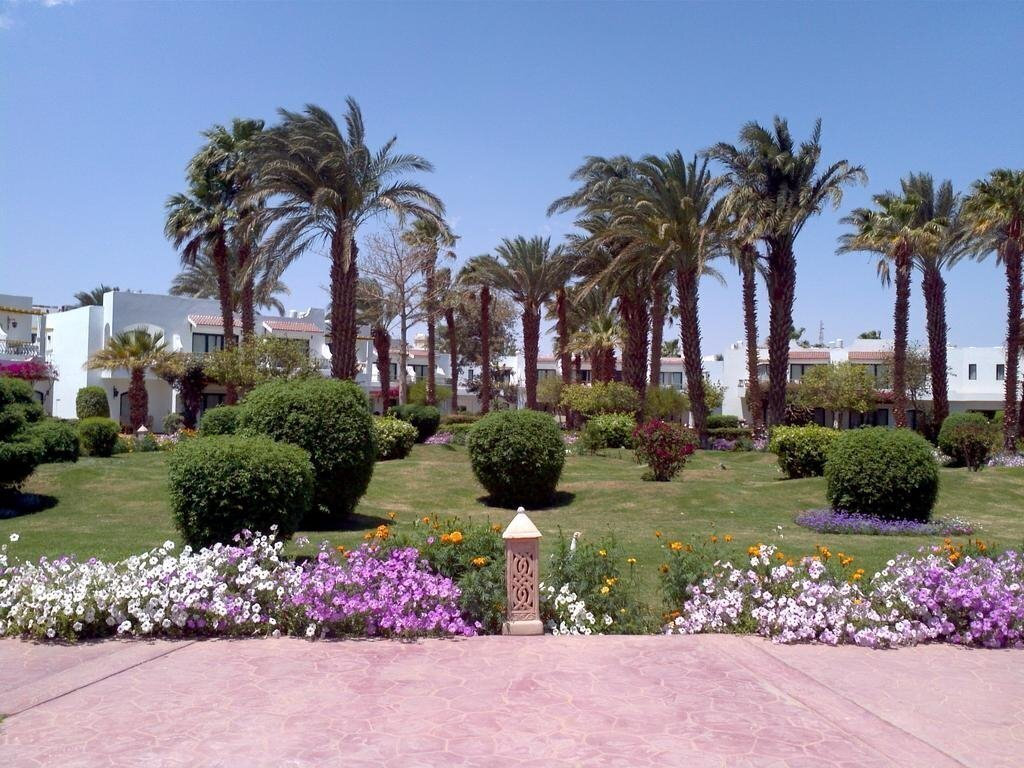Фото Lotus Bay Resort & Spa Abu Soma 4*