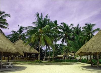 Фото Bohol Beach Club Филиппины