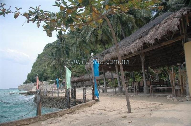 Фото Cebu Club Fort Med Resort о. Себу