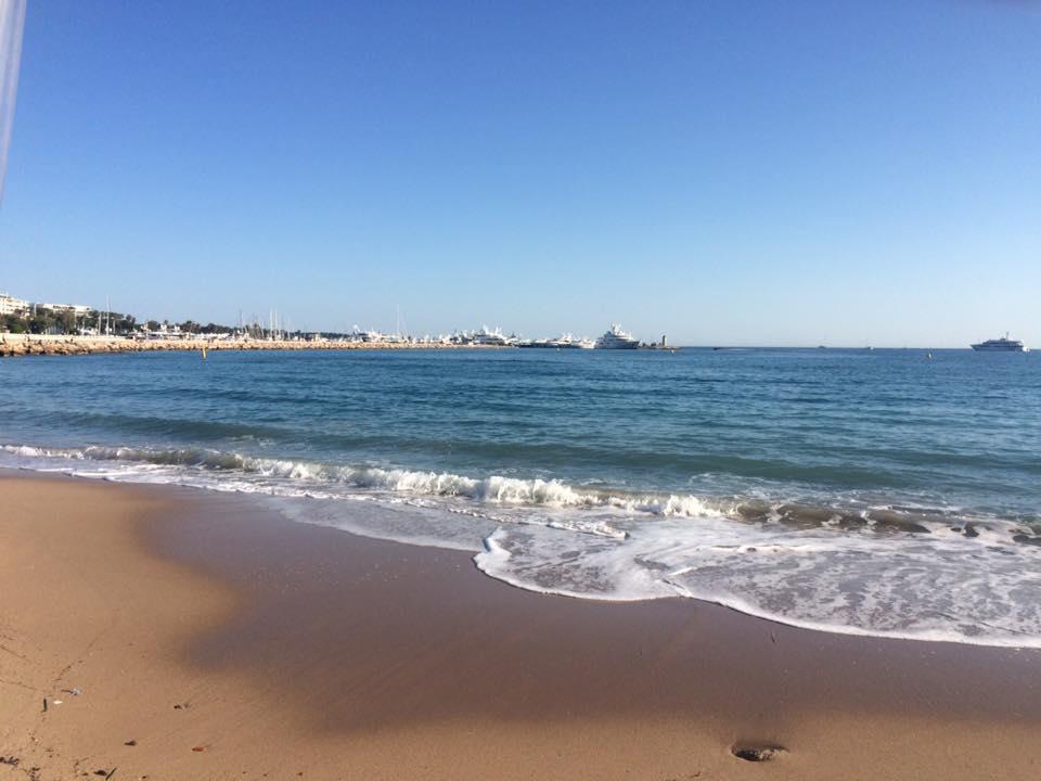 Фото Cannes Palace