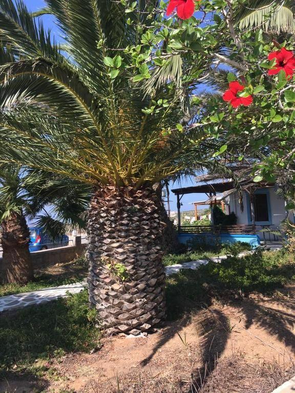 Фото Princess Studios Греция Ираклион (о. Крит)