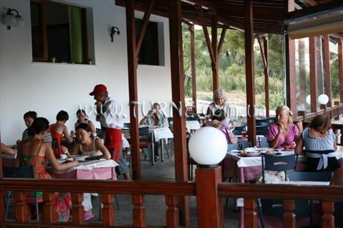 Фото Forest Park Hotel Кассандра (Халкидики)