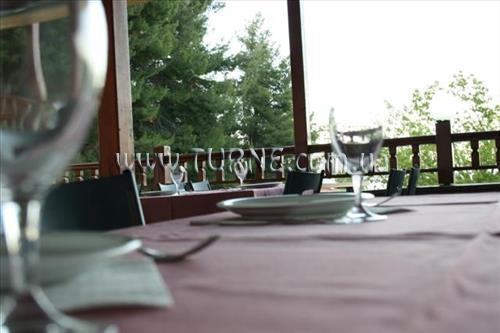 Отель Forest Park Hotel Кассандра (Халкидики)