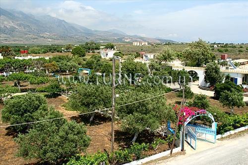 Фото Dolphins Apartments Греция о. Крит