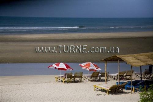Фото Dolphin Beach Resort Гоа