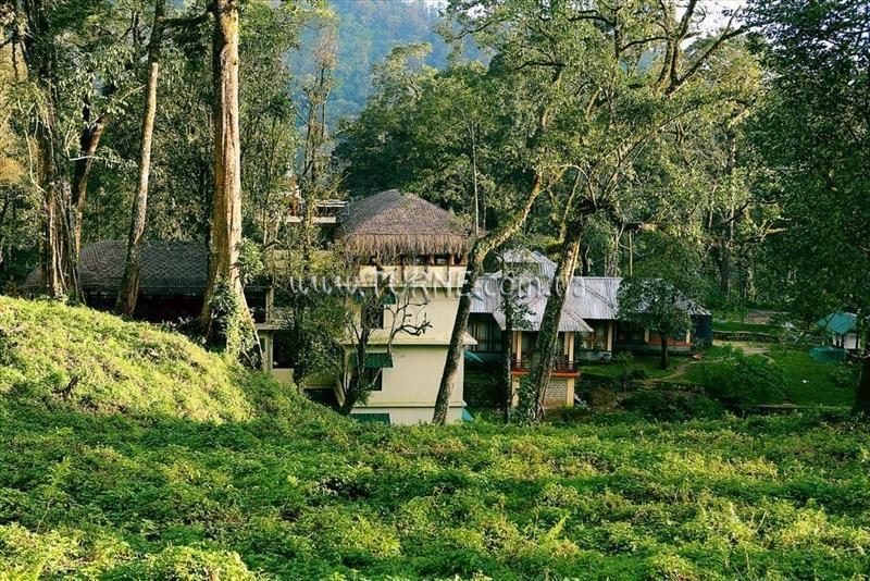 Deep Woods Resort Индия Керала