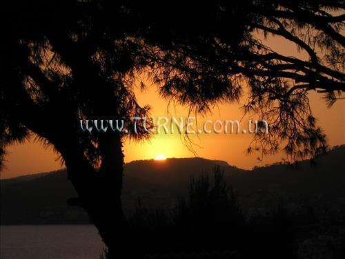 Фото Club Santa Ponsa 3*