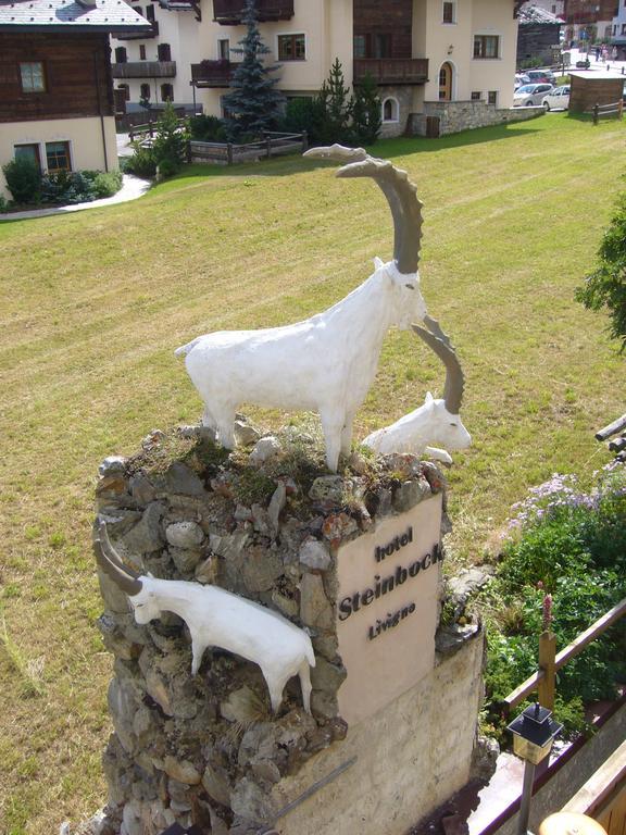 Steinbock Италия Ливиньо