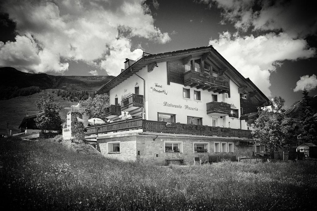 Фото Steinbock Италия Ливиньо