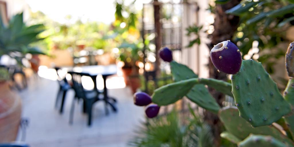 Фото Villa Sant'Antonio о. Сицилия