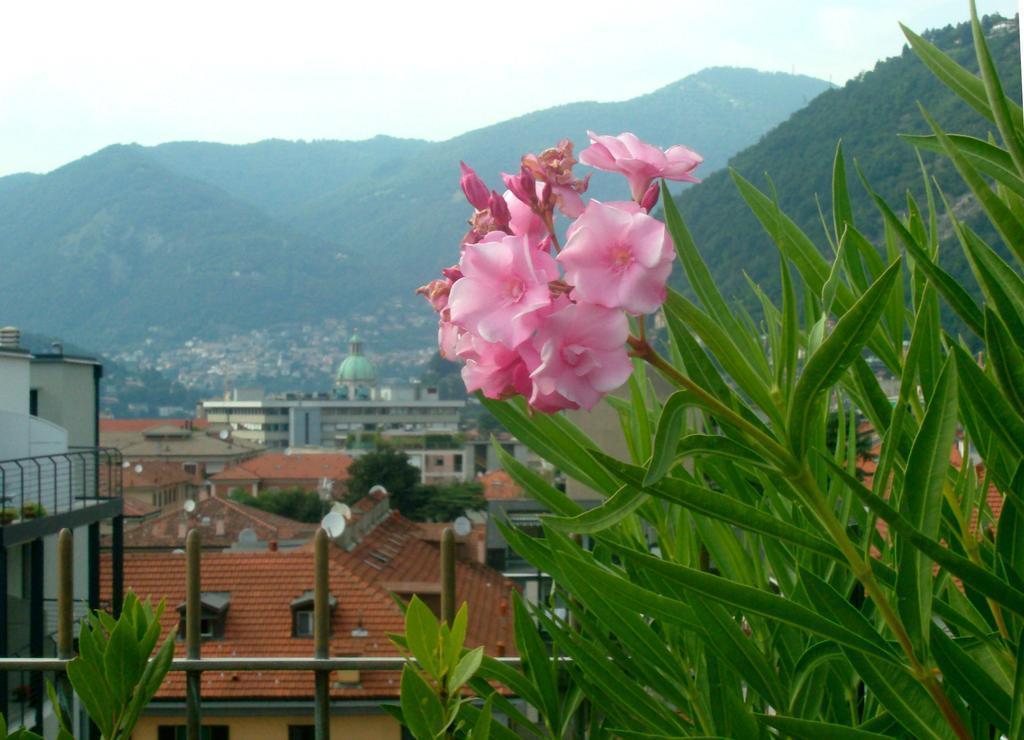Фото Hotel Como Италия оз. Комо