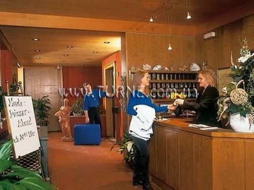 Фото Alpina hotel Пинцоло
