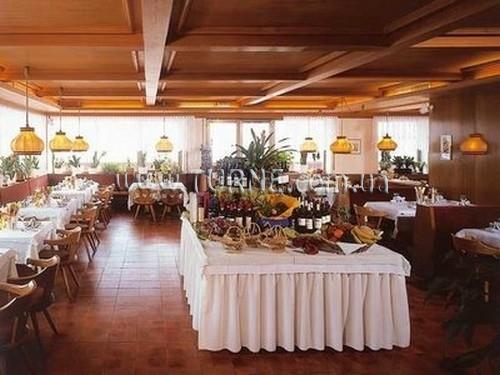 Отель Alpina hotel Италия Пинцоло