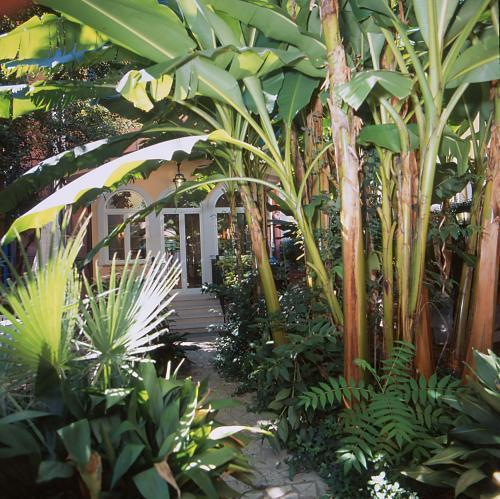 Astoria Garden Рим
