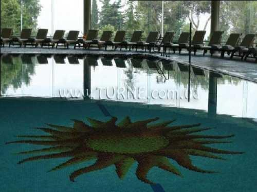 Фото Carmel Forest Spa Resort