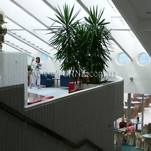 Фото Valamar President Hotel