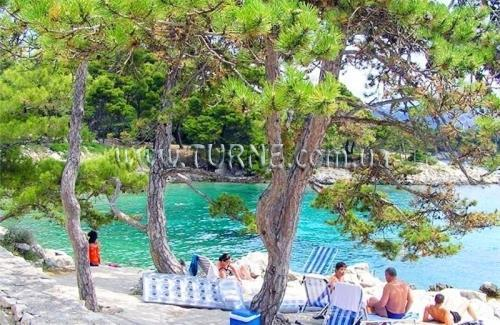 Tourist resort Suha Punta Хорватия о.Раб