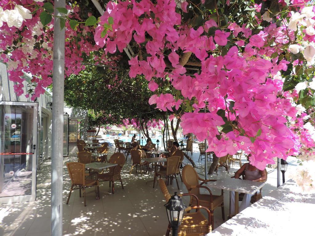 Фото Corfu 3*