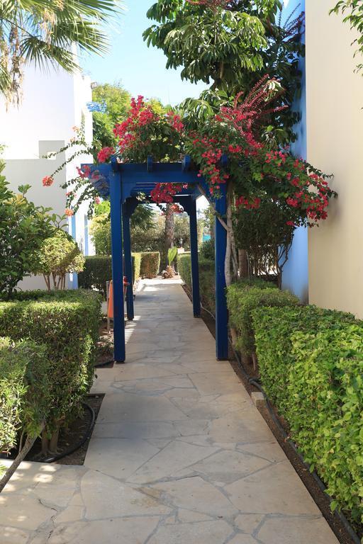 Отель Eleni Holiday Village Category A Кипр Пафос