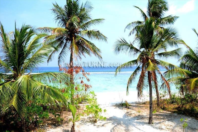 Velaa Beach Мальдивы Мале Атолл