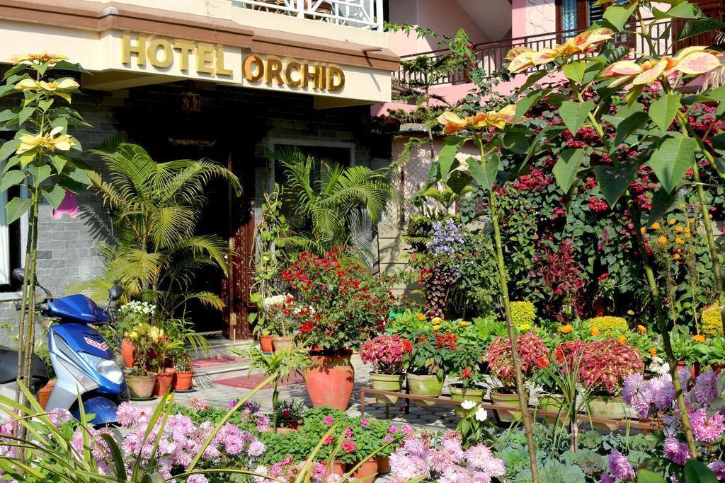 Отель Hotel Orchid Непал Покхара