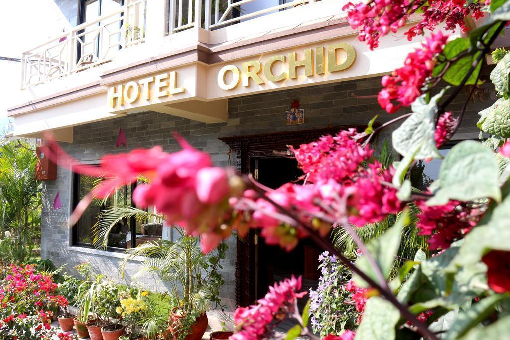 Фото Hotel Orchid