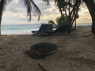 Cap Jean Marie Chalets 4*, Сейшельские острова, о. Праслин