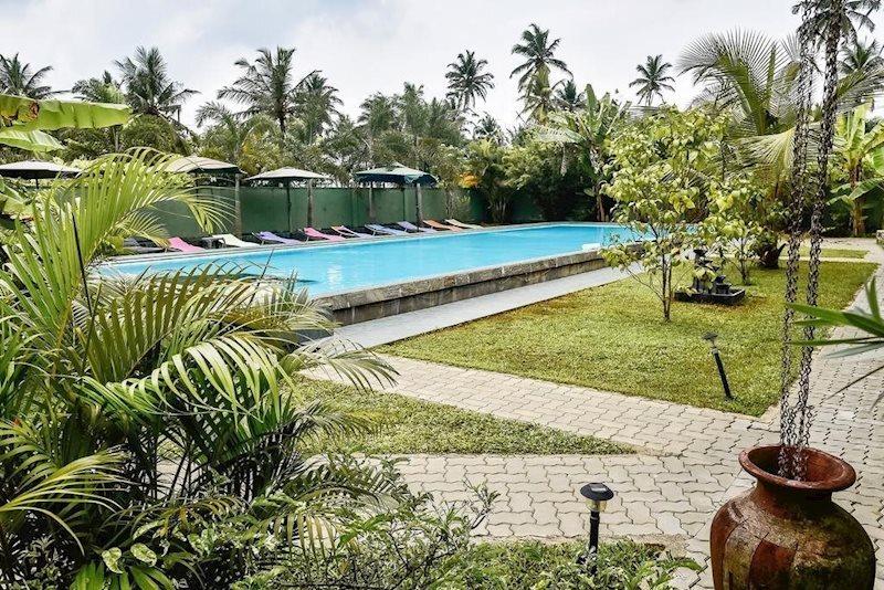 Отель Bounty Hotel Шри-Ланка Амбалангода