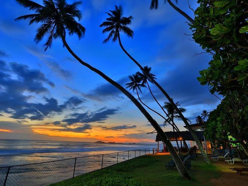Фото Lanka Supercorals