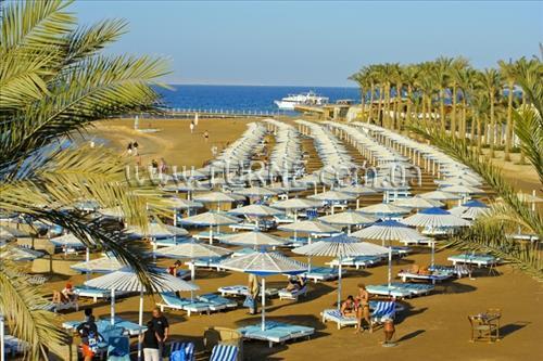 Фото Jungle Beach Resort 4*