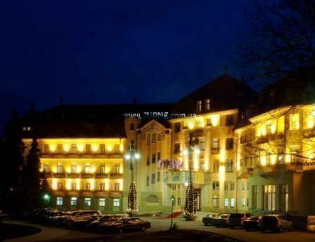 Фото Thermia Palace Словакия Пьештяны