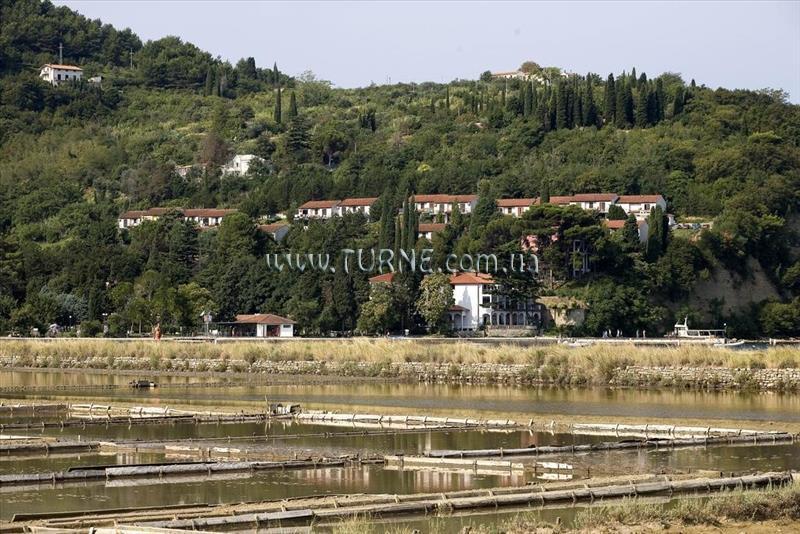 Salinera Apartments
