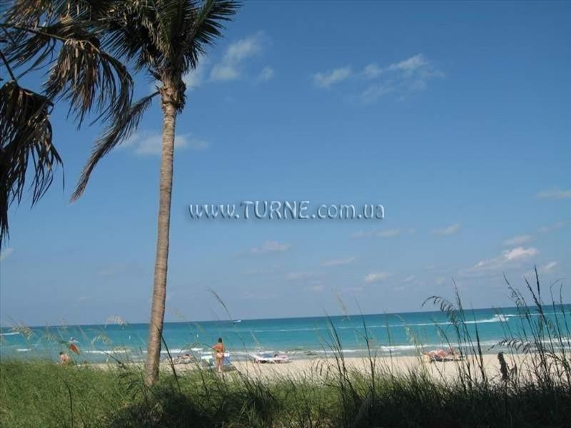 Фото The Seagull Hotel Miami Beach США