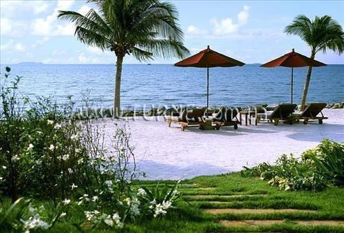 Фото Sheraton Pattaya Resort Таиланд (Тайланд) Паттайя