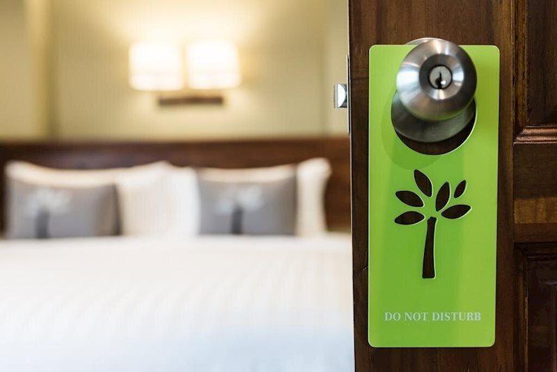 Фото Olive Tree Hotel 4*