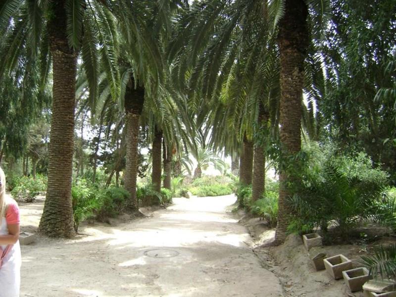 Фото Saadia Тунис Монастир