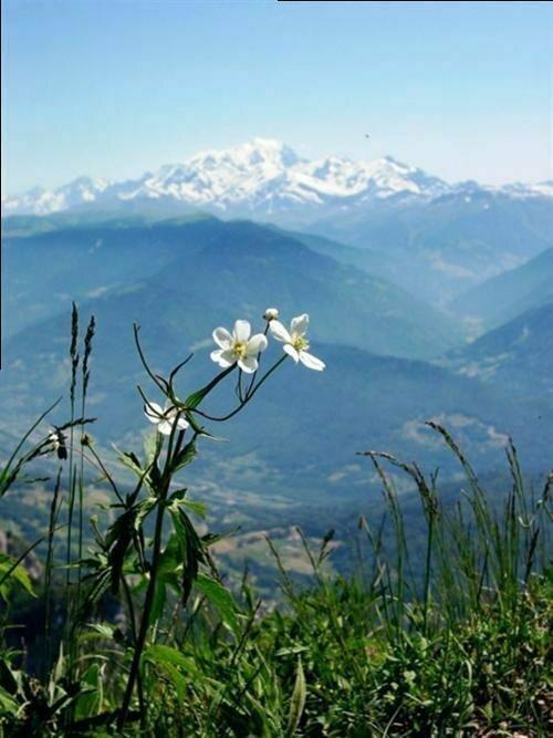 Фоторепортаж! За что я люблю горы?