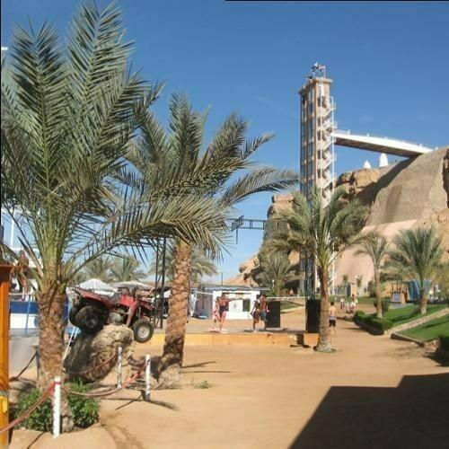 Лучшие фото дня от Татьяны (Египет)