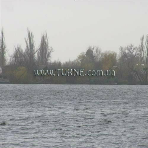Днепровские плавни на Херсонщине